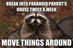 evil plotting raccoon meme