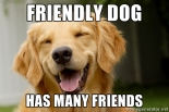 friendly friday friendly dog meme