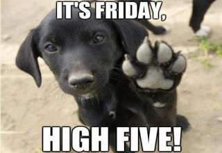 friday high five