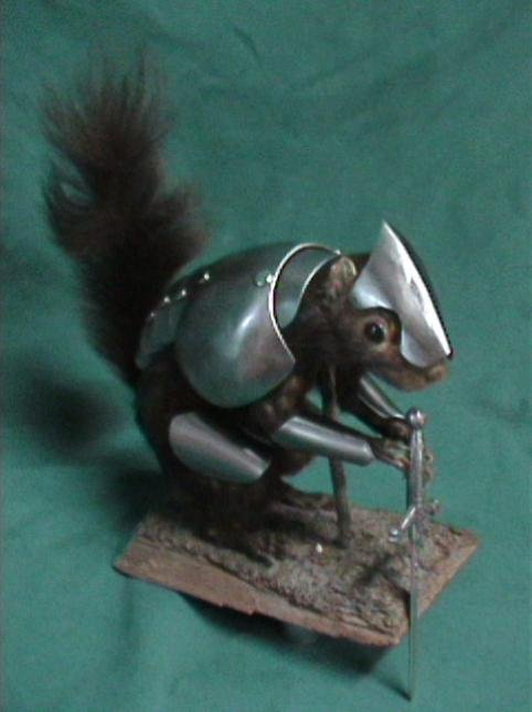 armored-squirrel-3