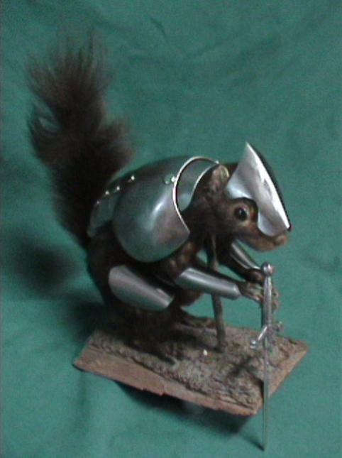 armored-squirrel-3