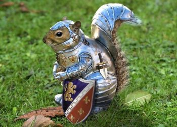 armored-squirrel-with-shield